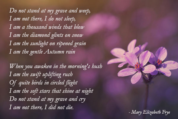 Mary-Elizabeth-Frye-Quote